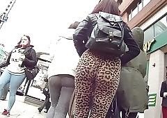 Leopard reproduce legging teen..