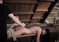 Bdsm added connected with..